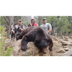 2019 Utah Statewide Black Bear Conservation Permit Multi-season