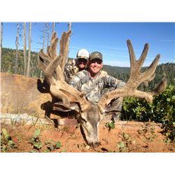2019 Utah Paunsaugunt Buck Deer Landowner Permit