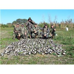 5-Day High Volume Dove Hunt in Argentina for Six (6) Hunters