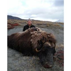 5-Day Musk Ox or Caribou Hunt for One (1) Hunter