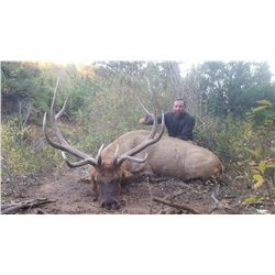 2019 Utah San Juan Bull Elk Conservation Permit,  Archery