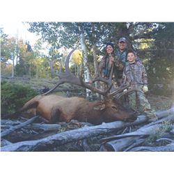 2019 Utah Plateau, Boulder/Kaiparowits Bull Elk Conservation Permit Any Legal Weapon (Rifle)
