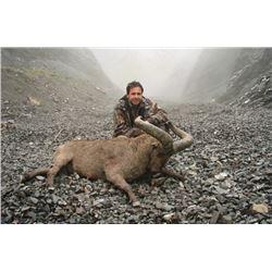7 day-Dagestan Tur Hunt-Azerbaijan