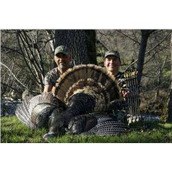2019 Turkey & Wild Hog Hunt in Northern California