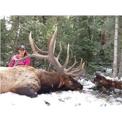 2019 Utah Statewide Bull Elk Conservation Permit
