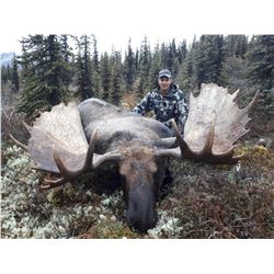 2019 Exceptional Trophy Alaska Yukon Moose and Caribou Hunt Arctic Red River Outfitters.