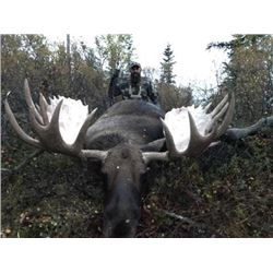 10 - DAY MOOSE HUNT FOR (1) HUNTER - FULL CURL STONE BC