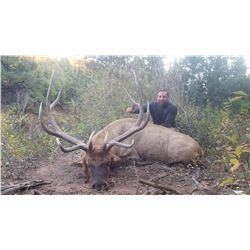 2019 Utah San Juan Bull Elk Conservation Permit Any Legal Weapon (Rifle)
