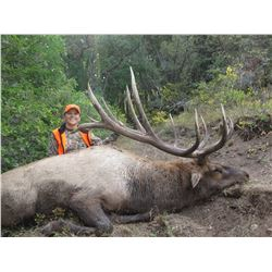 2019 Utah Fillmore, Pahvant Bull Elk Landowner Permit, Hunter's Choice
