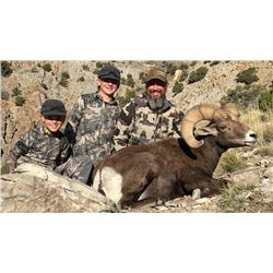 2019 Utah Box Elder, Newfoundland Mtn Rocky Mtn. Bighorn Sheep Conservation Permit (Early)