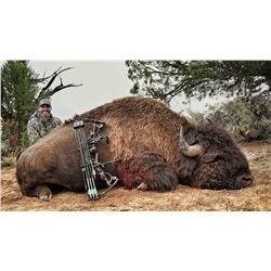2019 Utah Statewide Bison Conservation Permit