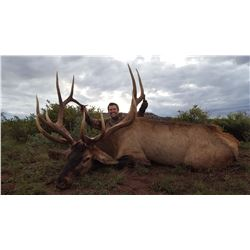 7-Day Bull Elk Hunt for One (1) Hunter on the Zuni Reservation in New Mexico
