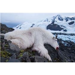 2019 Alaska Mt. Goat Hunt for One (1) Hunter