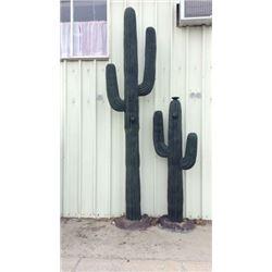 14ft cactus