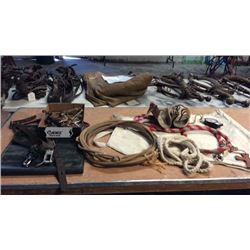 Grouping Of Used Tack