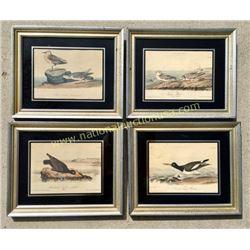 4 Audubon Prints In Original Frames