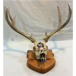 Mule Deer Mount Hand Painted