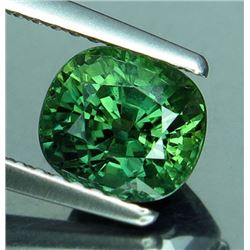 Natural  Green Sapphire 2.03 Carats - VS
