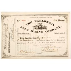 Dahlonega Gold Mining Company Stock Certificate