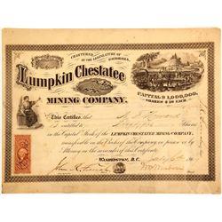 Lumpkin Chestatee Mining Company Stock Certificate