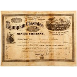 Lumpkin Chestatee Mining Company Stock Certificate 2