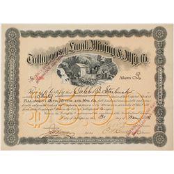 Tallapoosa Land, Mining & Mfg. Co. Stock Certificate