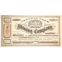 Central Park Mining Co. Stock Certificate, Gold Hill, Nevada Territory, 1864
