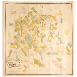 Chute's Map of Goldfield Mining District