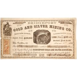 Bridgeport Gold & Silver Mining Co. Stock Certificate, Reese River, Nevada, 1865