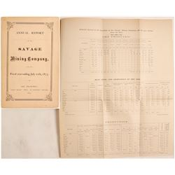 1873 Savage Company Annual Report