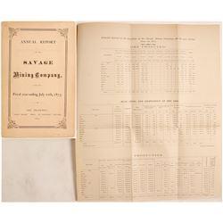 1873 Savage Company Annual Report