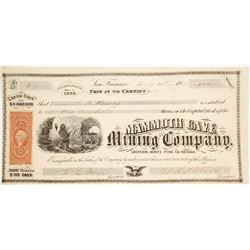 Mammoth Cave Mining Co. Stock Certificate, White Pine Co., NV 1869