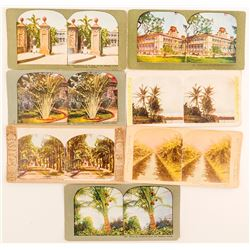 Hawaiian Tree Scenes Stereoviews