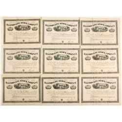 Illinois Live Stock Company Stock Certificates