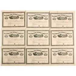 Illinois Live Stock Company Stock Certificates