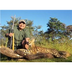 South Africa Small Cat Grand Slam