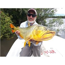 Uruguay Golden Dorado Fishing Trip for 2 Anglers