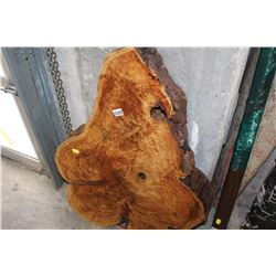 LARGE BURL SLAB