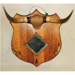 Horn Mirror