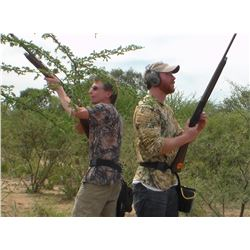 Argentina Dove Hunt - Six Hunters - L & S Hunting