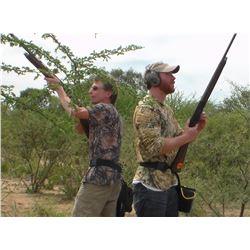 Argentina Dove Hunt - Six Hunters - L & S Hunting
