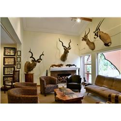 South Africa – Two Rifle Permits, Afton Safari Lodge Stay and Shipping Discount