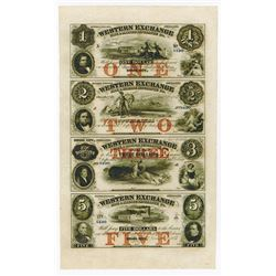 Western Exchange, Fire & Marine insurance Co., 1857 Uncut Sheet of 4 Obsolete Banknotes.