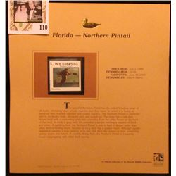 1999 Florida-Northern Pintail Waterfowl $3.00 Stamp. Mint Condition with literature, unsigned.