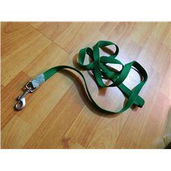 USED DOG LEASH - GREEN - SOME TARNISH ON CLIP