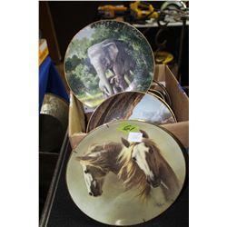Flat with 6 Decorative Plates; Horses & Other Animals