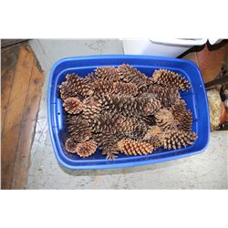 Plastic Tote of Large Pine Cones (can be used in your flower beds)