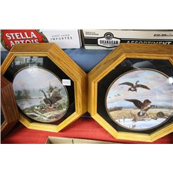 Pair of Framed Geese Collector Plates