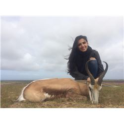 5 day South African Springbok Hunt  And Cape Town Tour
