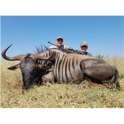 7 Day African Safari for 4 Hunters  in Zululand, South Africa